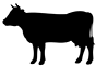 product_icon_animal_cow_71