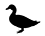 product_icon_animal_duck_7