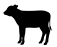 product_icon_animal_fawn_7