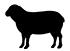 product_icon_animal_sheep_7