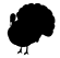 product_icon_animal_turkey_7